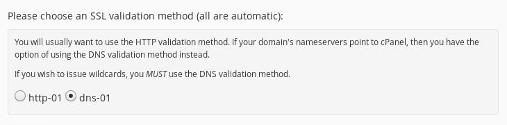 Selecting DNS-01 validation